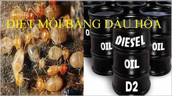 Sử dụng dầu hỏa để diệt mối
